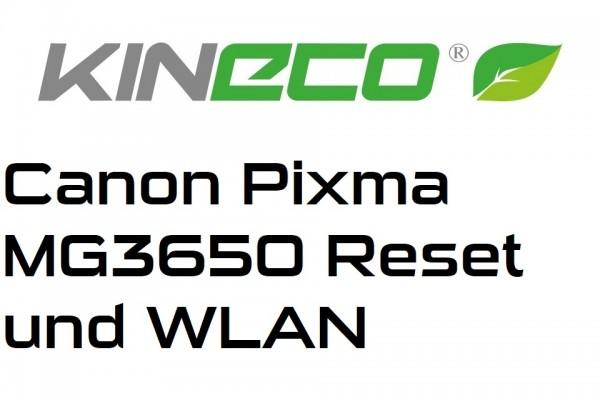 Canon-Pixma-MG3650-Netzwerkeinstellungen-zur-cksetzen-und-WLAN-Netzwerk-einrichtentpv7KBBRhJMnN