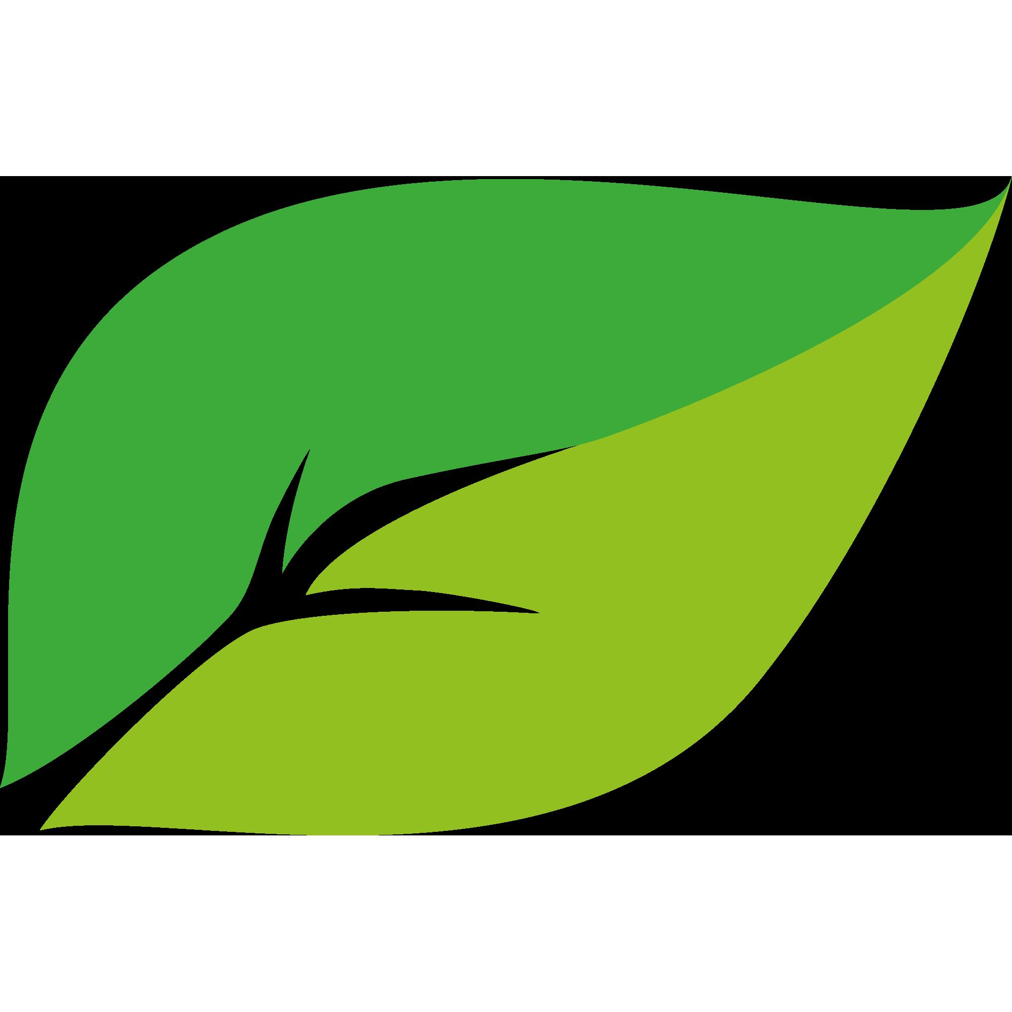 kineco-blatt-grün
