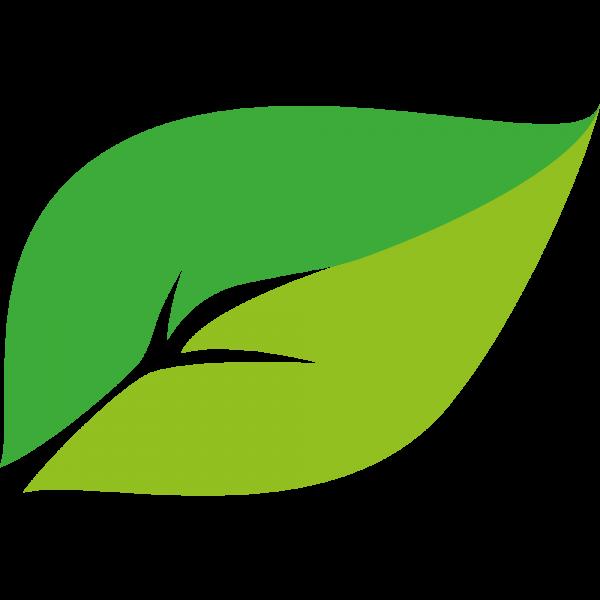Kineco_Logo_Blatt7WS2VsqrgakjL